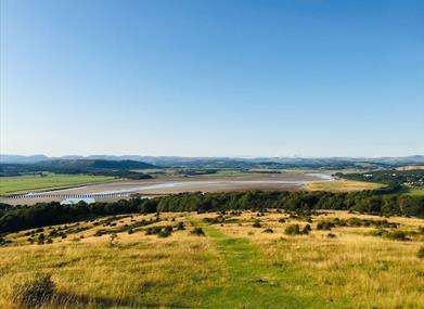 Hidden Gems of Cumbria - Arnside Knott