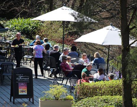 The Terrace Coffee House & Restaurant