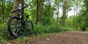 Cycle Hire at Lowther Castle