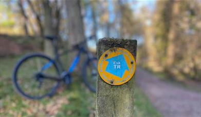 Mountain Bike Hire and Guided Biking from West Lakes Adventure