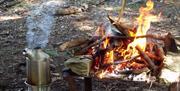 Bushcraft - Activities in Lakeland