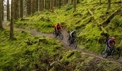 Cyclewise Whinlatter