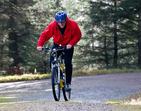 Tour of Coniston Water & the Torver Trail