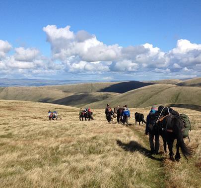 Howgills 4-Day Trek with Fell Pony Adventures