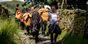 Swindale 3-Day Trek with Fell Pony Adventures