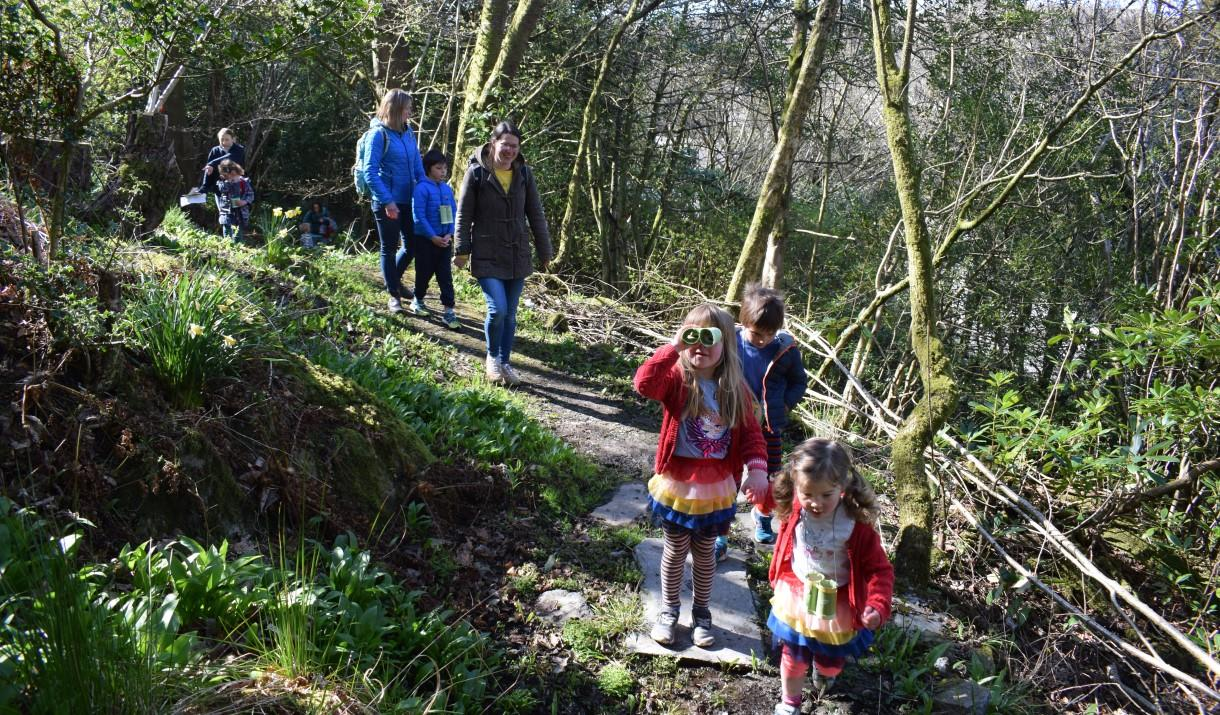 Family WellbeingDay Including Forest Bathing