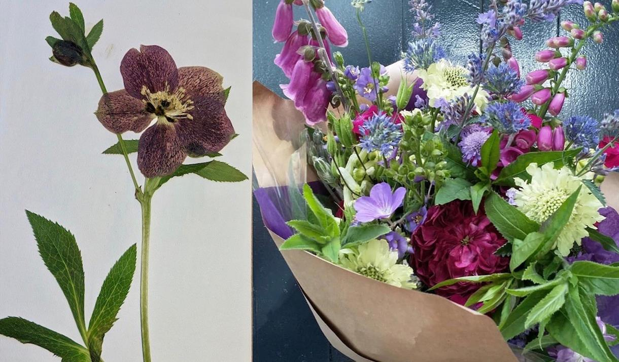 Arranging Flowers: Fresh and pressed at Cowshed Creative