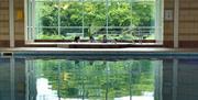 Holgates Holiday Park, Silverdale - Swimming Pool
