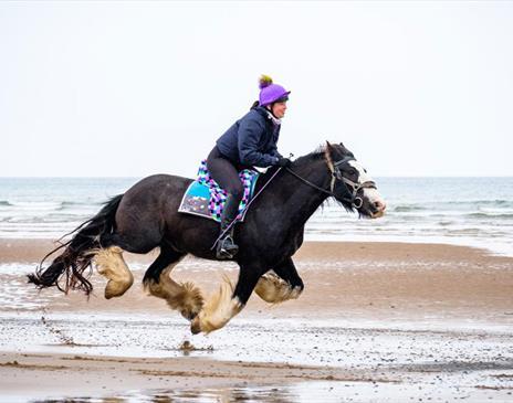 Murthwaite Green - galloping on the beach
