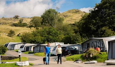Camping Pitches at Park Cliffe