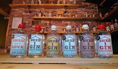 Shed 1 Gin
