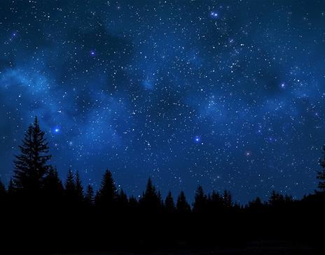 Stargazing Nights