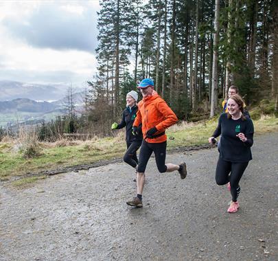 Whinlatter Running Trails
