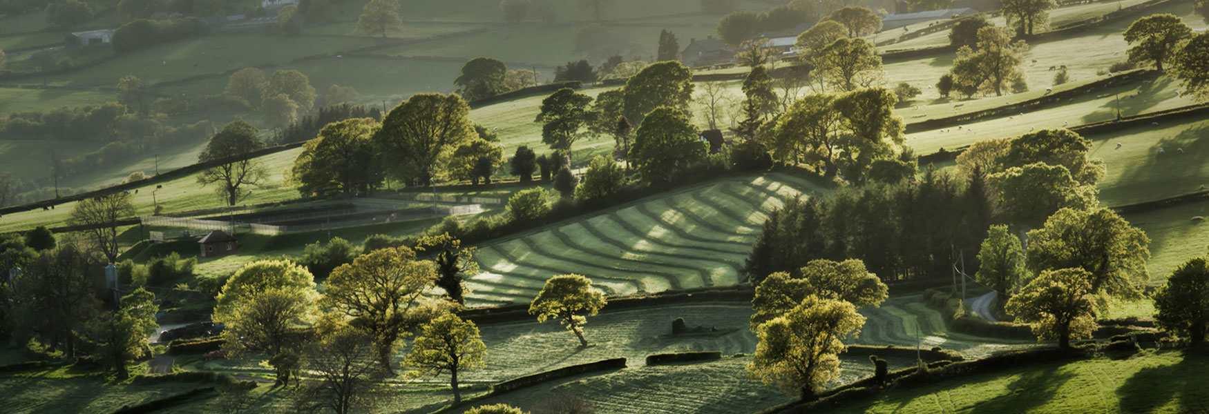 Glorious Countryside