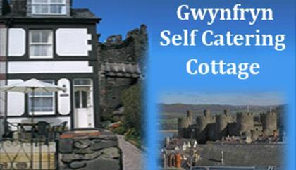 Gwynfryn