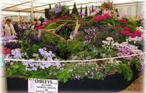 Dibleys Nurseries