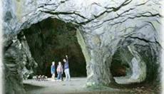 Llanfair Caverns & Farm Park