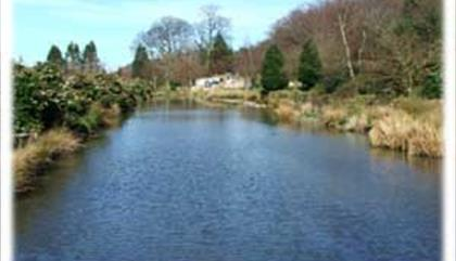 Conwy Water Gardens