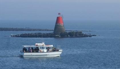 Puffin Island Cruises