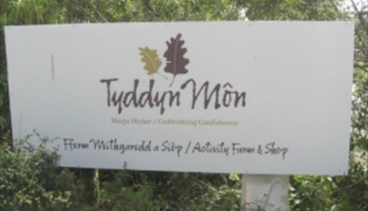 Tyddyn Mon Ltd