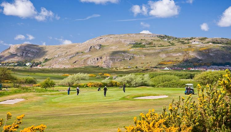 Coastal Golf Pass: Package One