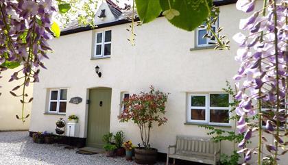 Vale View Cottages