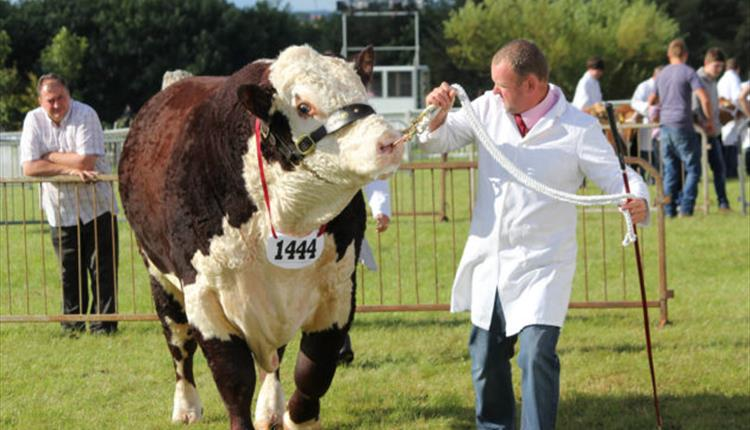 Anglesey Agricultural Society