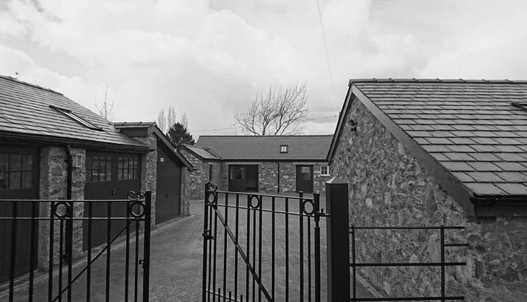 Snowdonia Distillery