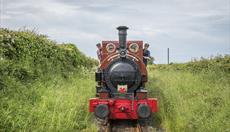 Rheilffordd Talyllyn Railway
