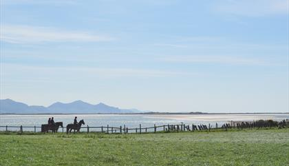 Anglesey Riding Centre