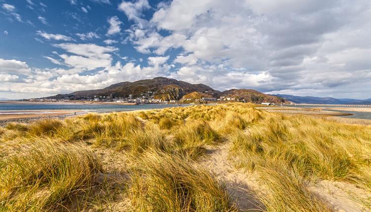 Fairbourne Beach