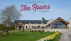 Tea Rooms at the Pet Cemetery