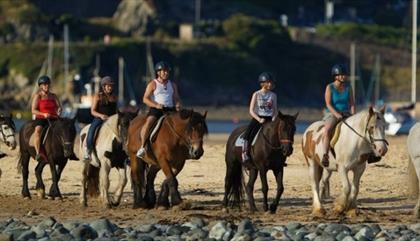Bwlchgwyn Farm Pony Trekking & Riding