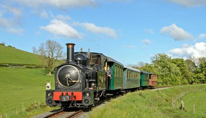 The Earl  steaming through Mid Wales