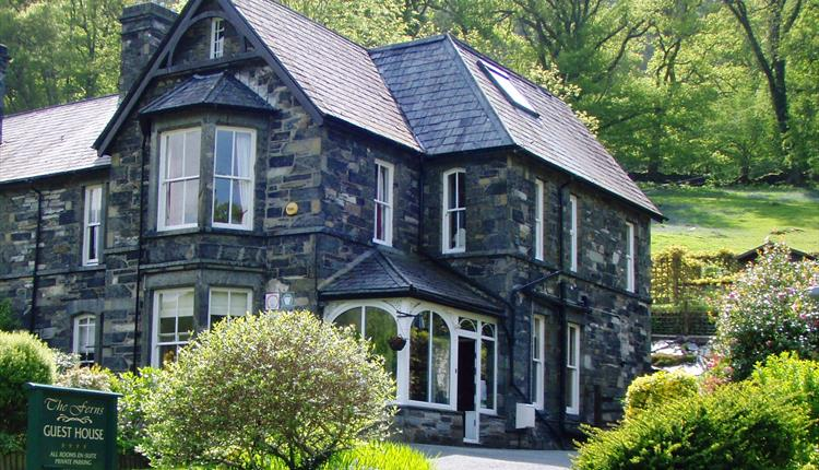 The Ferns Guesthouse