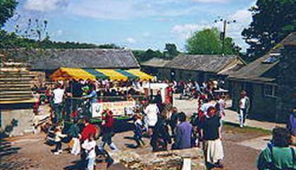 Foel Farm Park