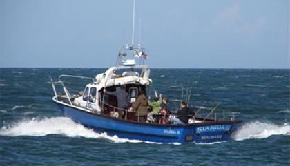 Starida Puffin Island Cruises & Fishing Trips