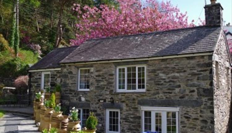 Tyn y Fron Holiday Cottage
