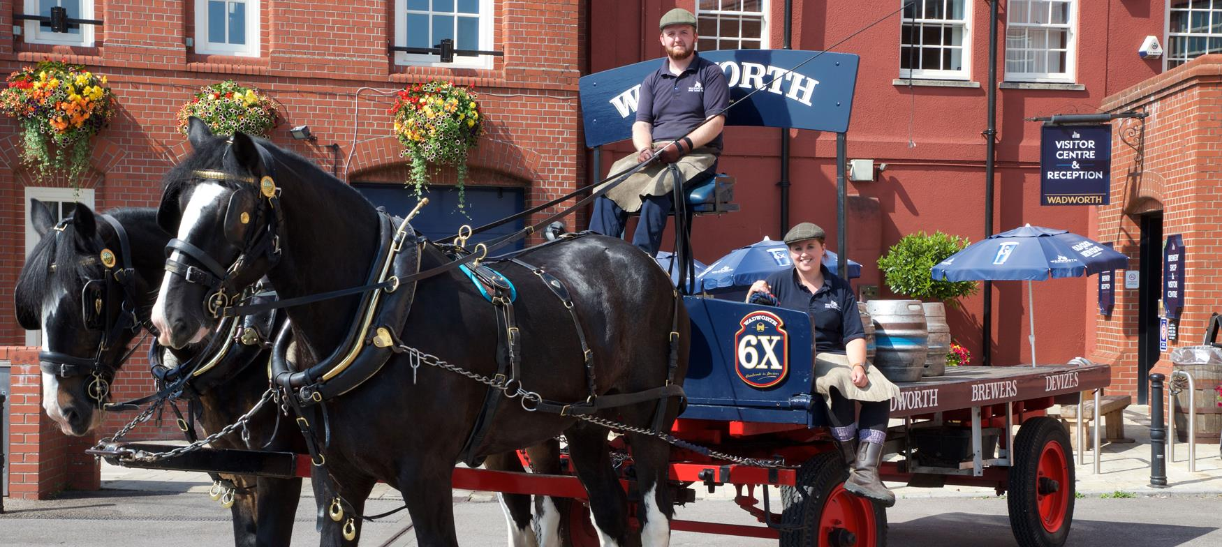Horses with a cart at Wadworth Brewery