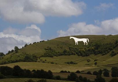 Westbury White Horse Summer Wiltshire