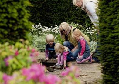 National Trust - Tintinhull Garden
