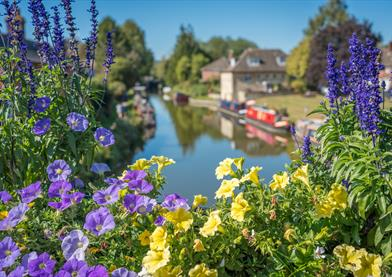 flowers surrounding the canal