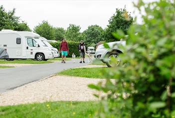 Walking dogs at Devizes Camping and Caravanning Club Site