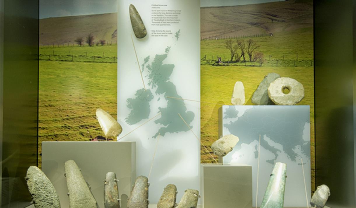 Neolithic Axe Display