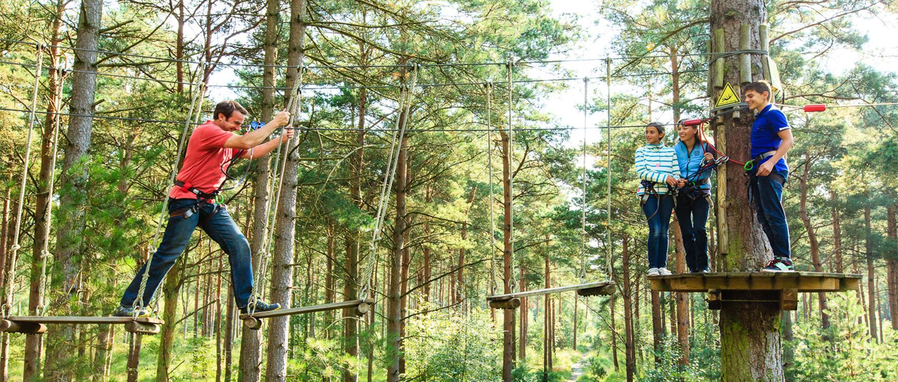Go Ape Tree Top Adventure |