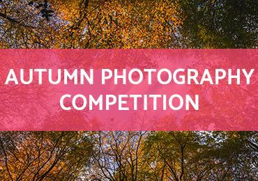 Autumn Photo Competition 2018
