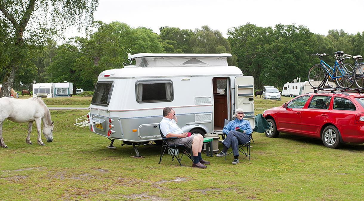 Campsites in Hampshire
