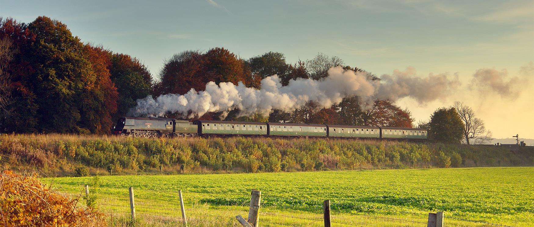 The Watercress Line, Alresford
