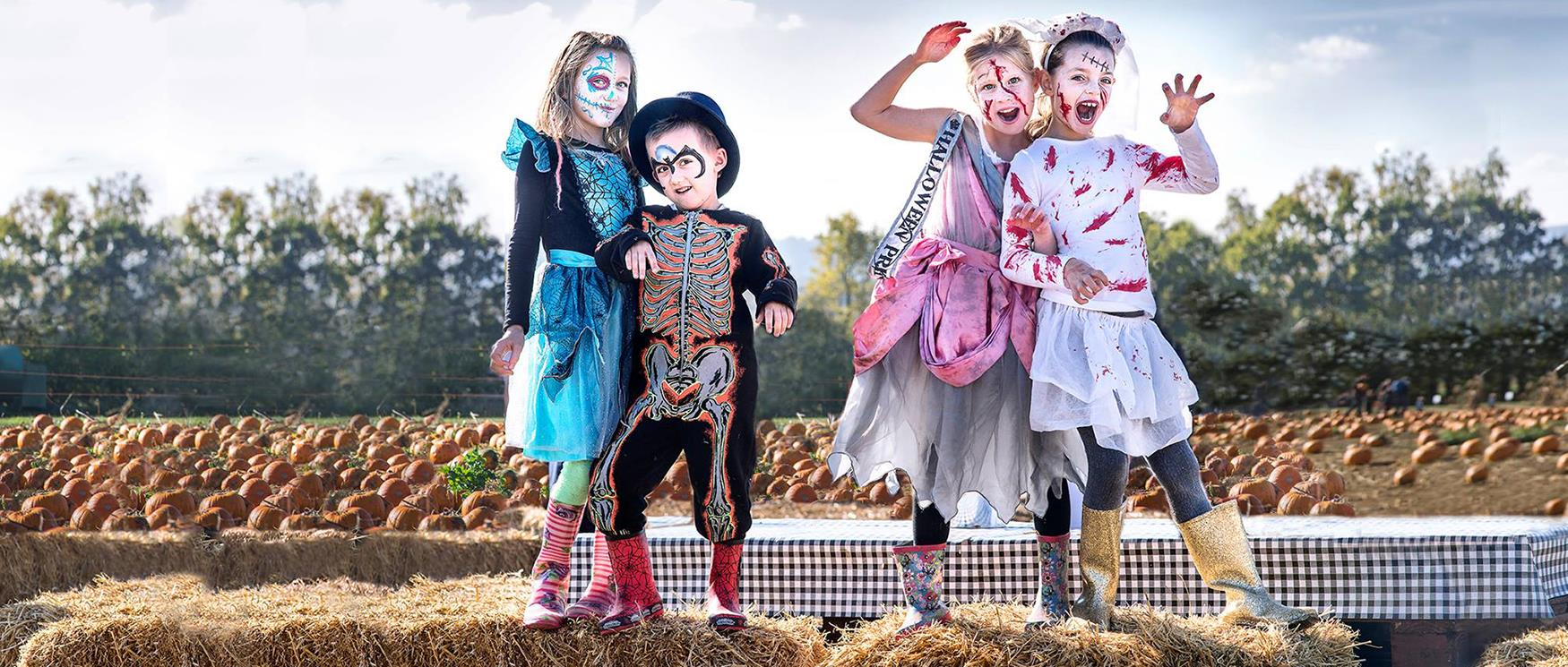 Halloween in Hampshire
