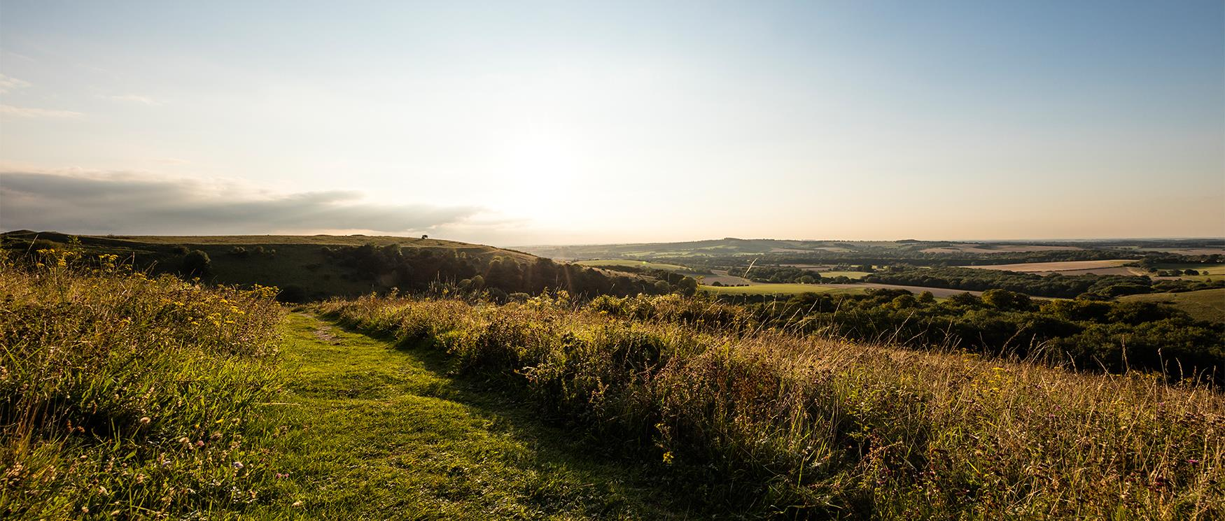 Old Winchester Hill, South Downs National Park